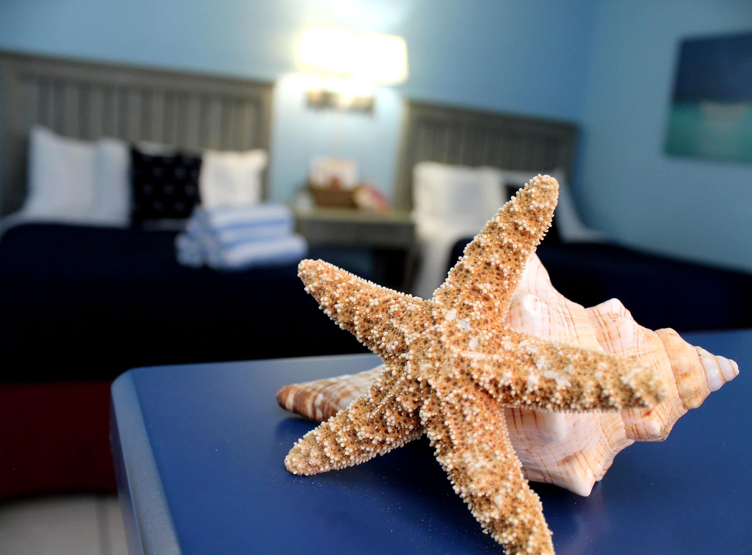 Bay Inn Deluxe Suite | Decor | Rooms Available